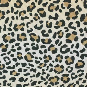 leopard_thumb_24